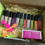 Julep Maven Box – January 2012 Review – Monthly Nail Polish Subscription Boxes