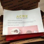 Acme Party Box Company Craft Subscription Review