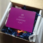Julep Mystery Box Review - Hamptons Destination Mystery Box