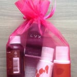 Vegan Cuts Beauty Box Subscription Review – March 2014