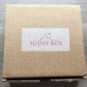 Sudsy Box Subscription Review – February 2015