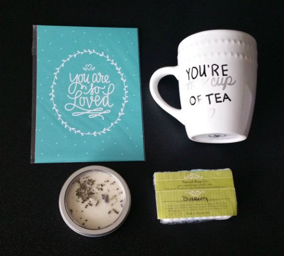 Dottie Box Subscription Box Review – February 2015 Items