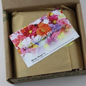 Bare Bliss Box Subscription Review – June 2015