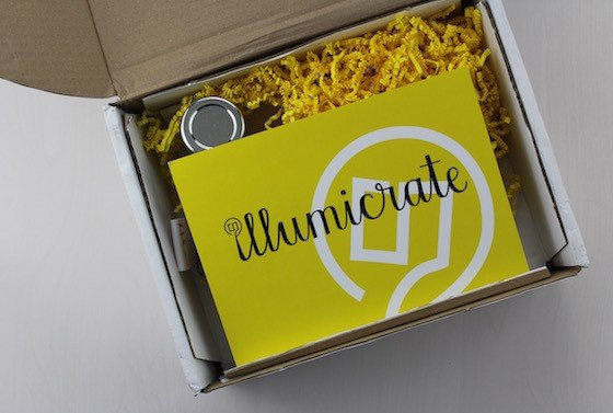Review for Illumicrate YA Book Subscription Box Review - February 2016