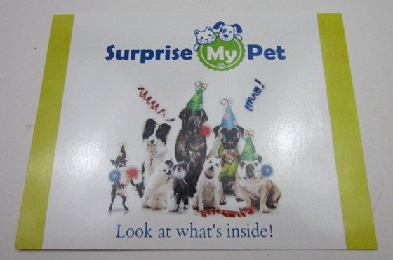 surprisemypet-january-2016-card1