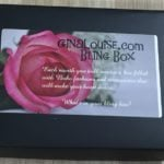 Gina Louise Bling Box Subscription Box Review + Coupon – Jul 2016