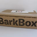 BarkBox Subscription Box Review + Coupon – August 2016