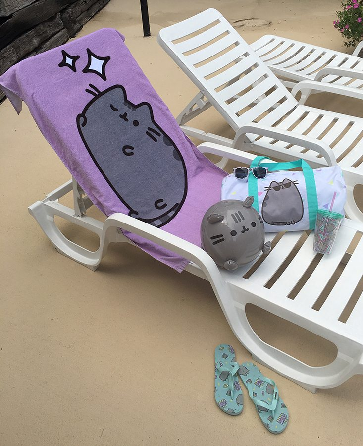 Pusheen-Box-Summer-2016-9