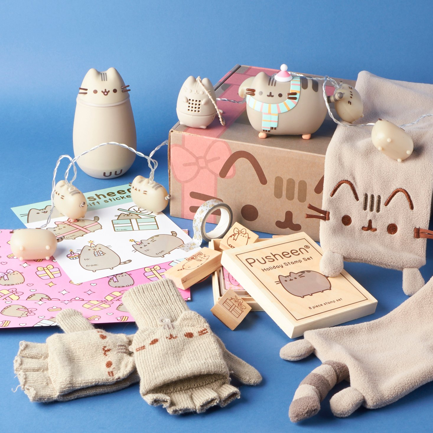 pusheen-box-winter-2016-0005