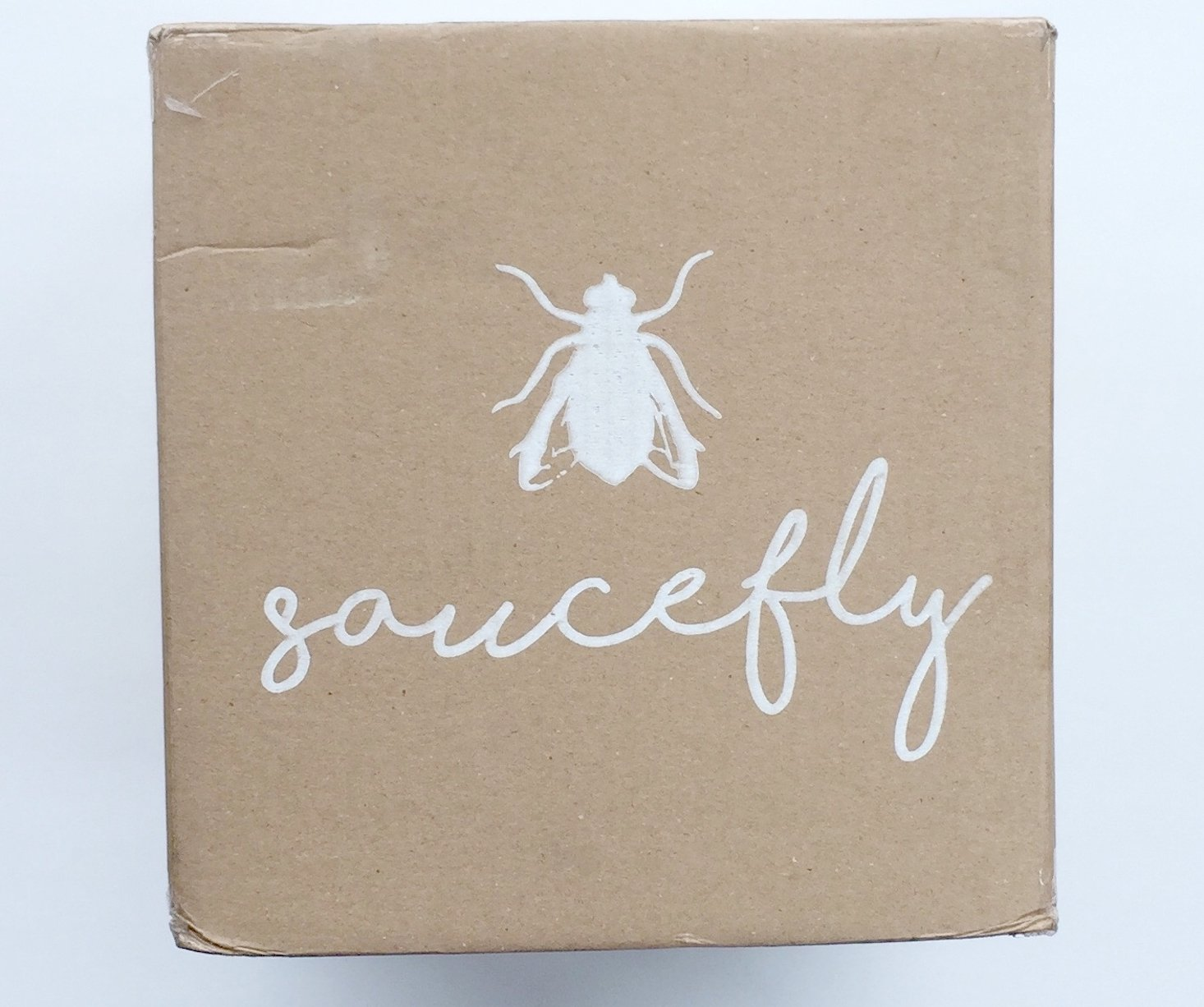 Saucefly Food Subscription Box Review + Coupon– December 2016