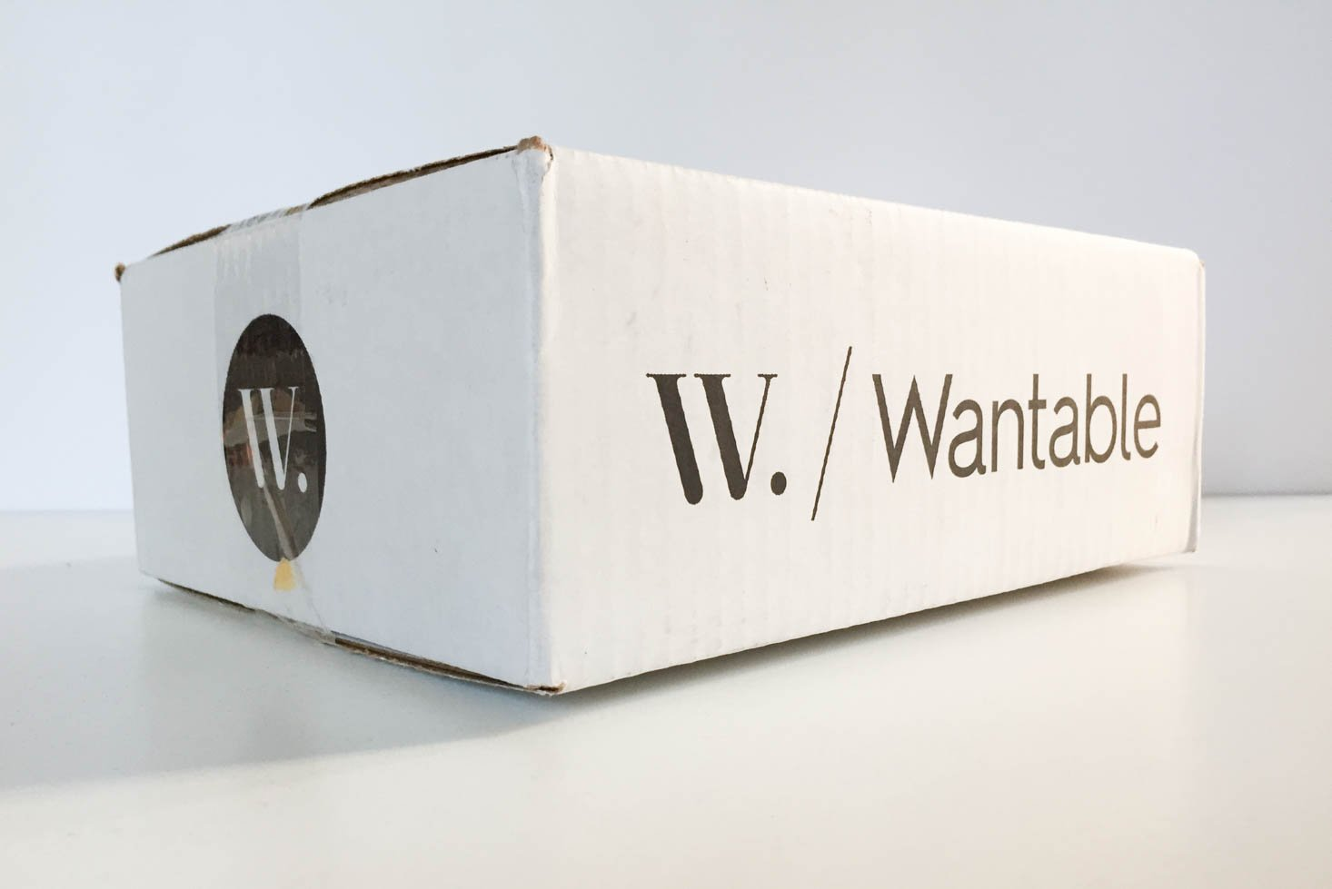 Wantable Accessories Subscription Box Review– December 2016