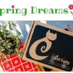 Cat Lady Box March Theme Spoiler + 10% Off Coupon!