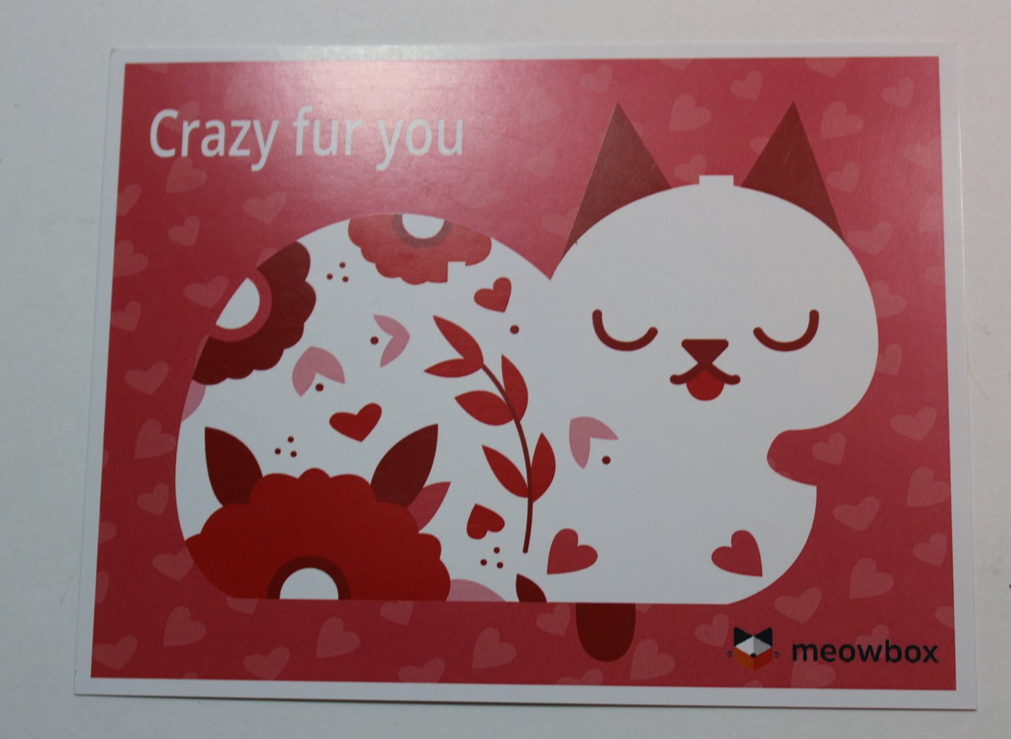 meowbox-february-2017-booklet-front