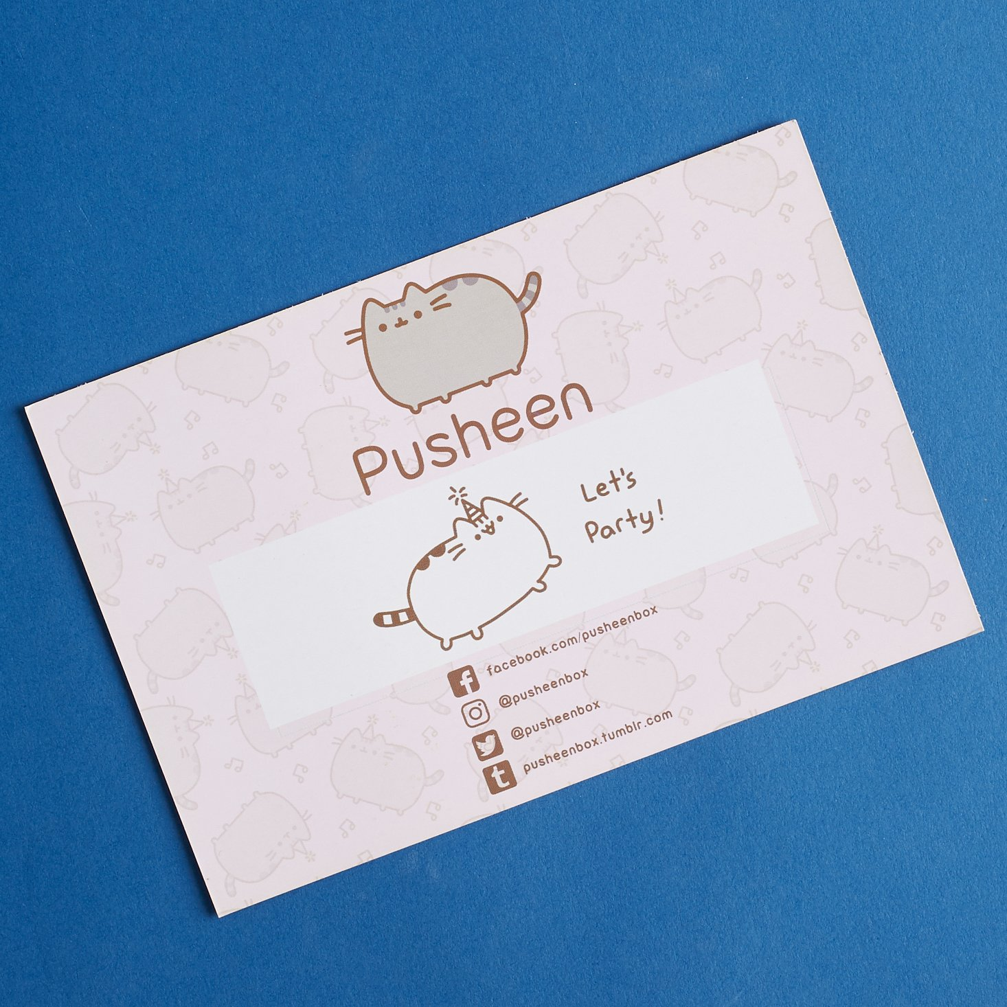 Pusheen-box-april-2017-0007