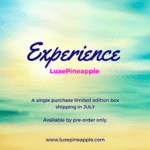 Limited Edition Experience LuxePineapple Box – Available for Pre-Order + Coupon!