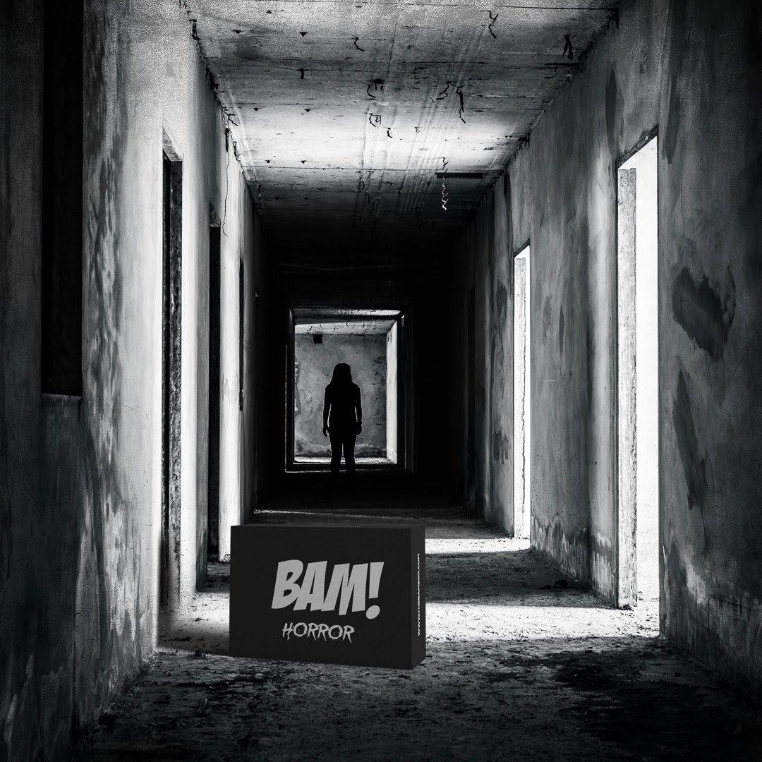 The BAM! Horror Box June 2018 Franchises!