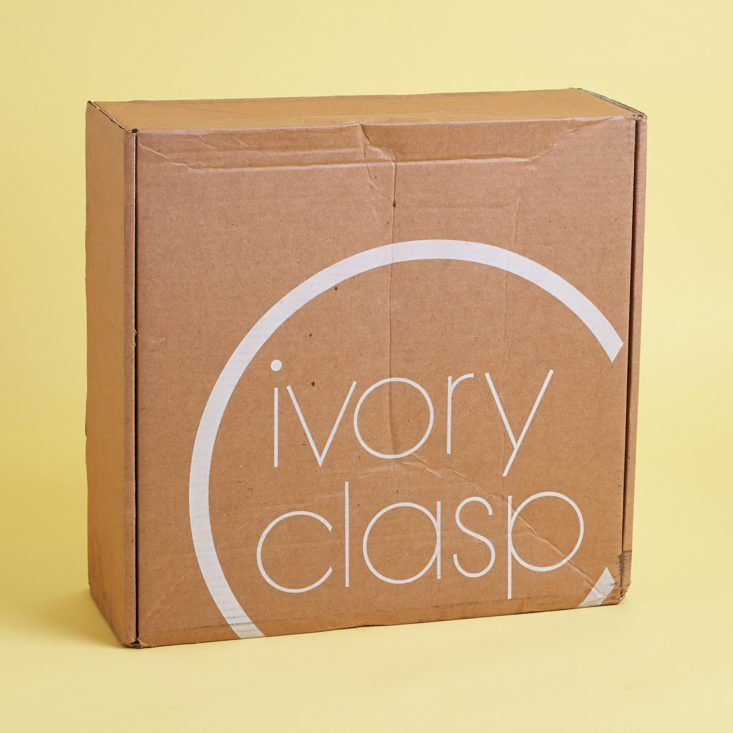 What handbag did I get in this month's Ivory Clasp purse subscription box?