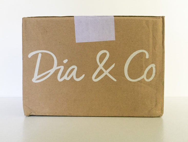 dia and co september 2017 Women's Plus Clothing Subscription Box