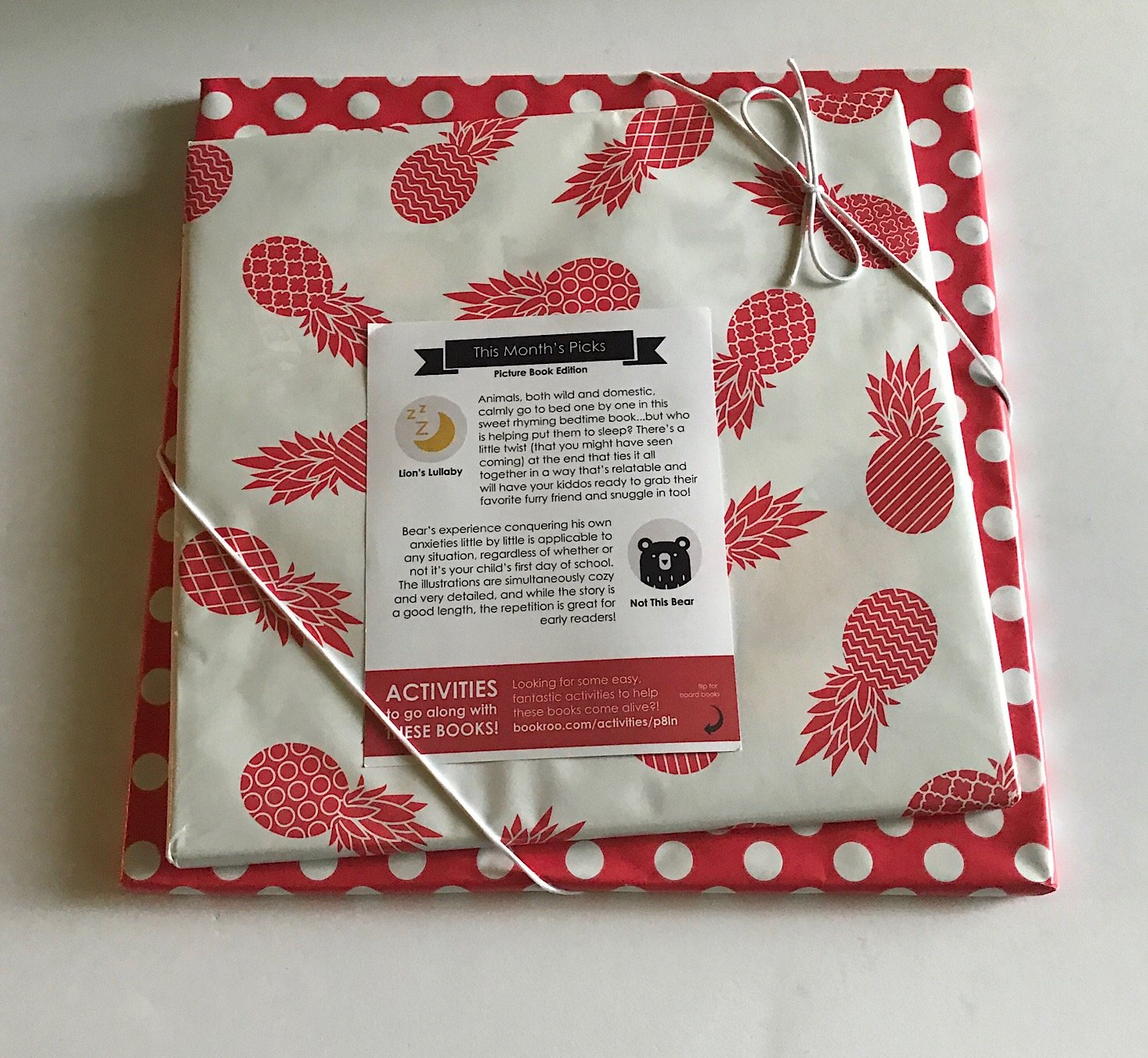 Bookroo Subscription Box Review + Coupon – August 2018