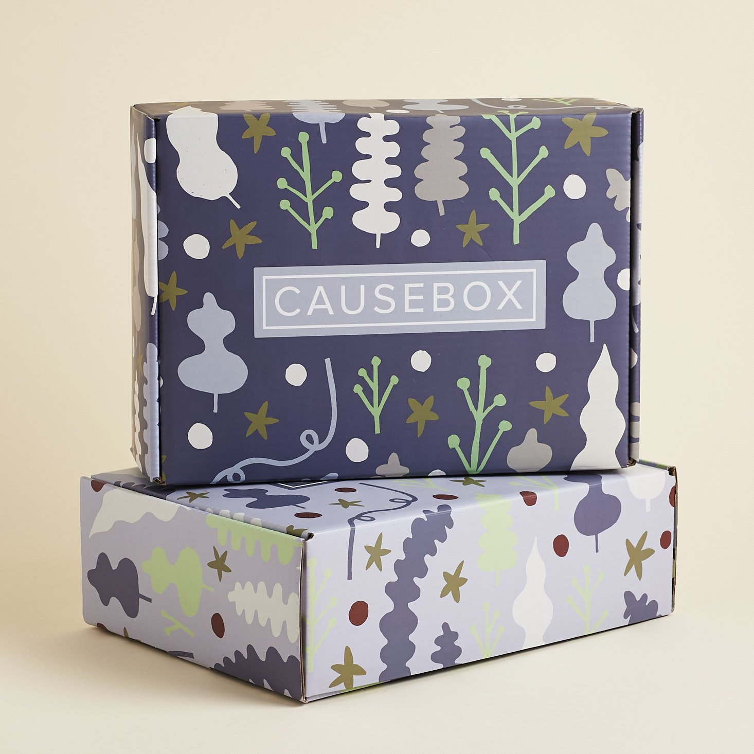 CAUSEBOX Winter 2019 Welcome Box Review + Coupon