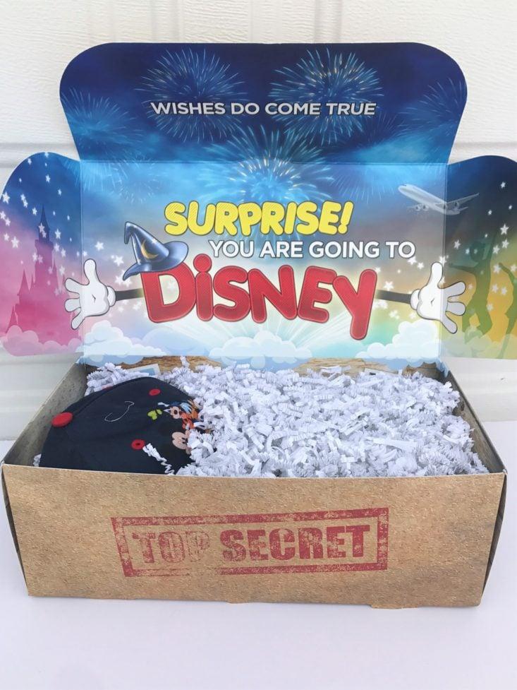 Review for Walt Life Disney Surprise Box Review + Coupon – December 2018