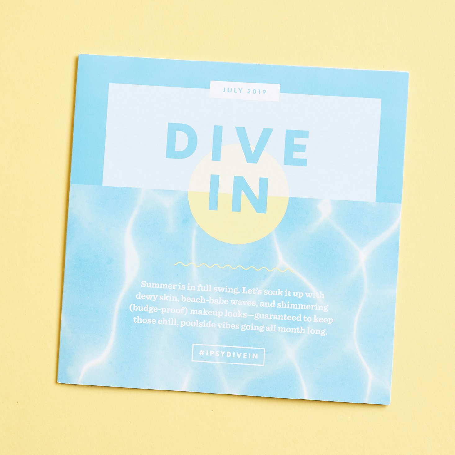 front of info booklet that says DIVE IN