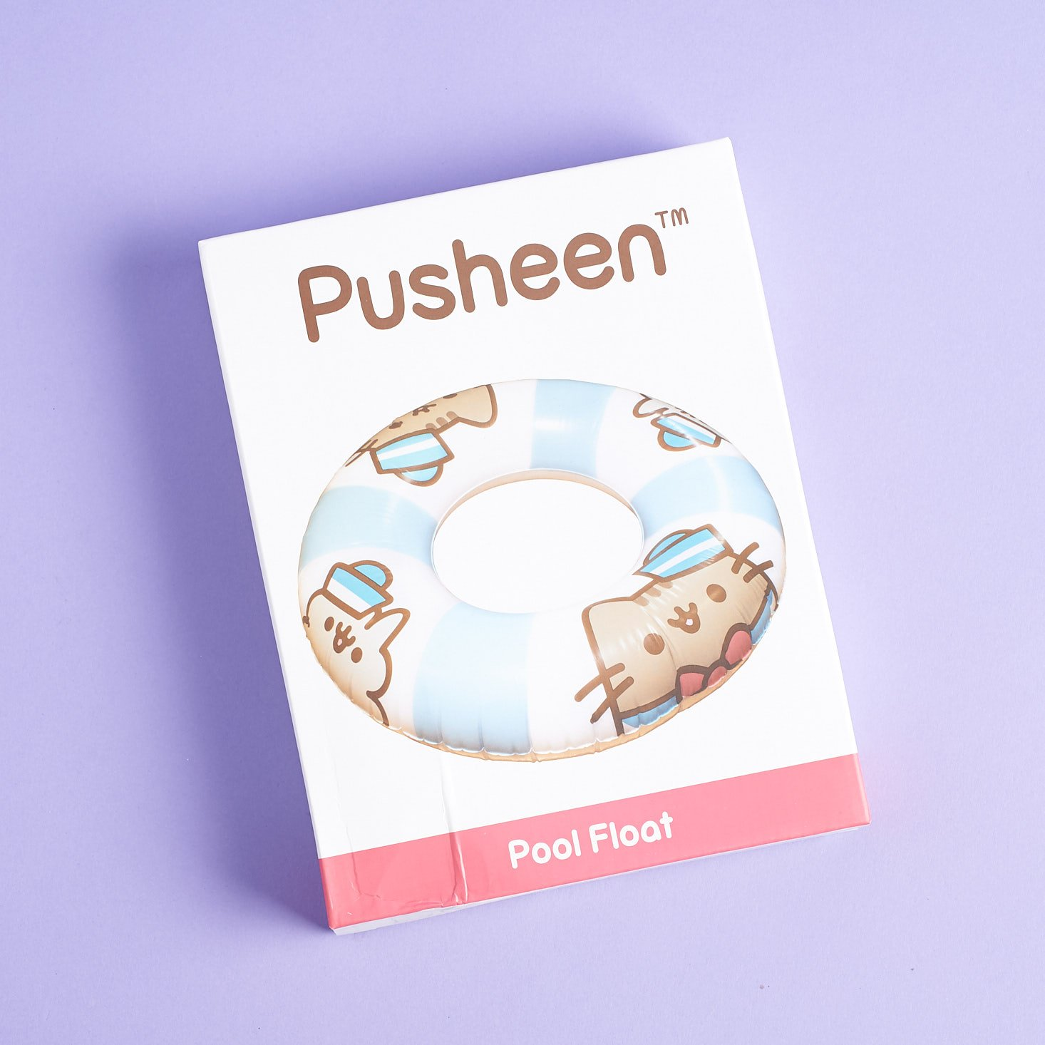 Box for Pusheen Pool Float