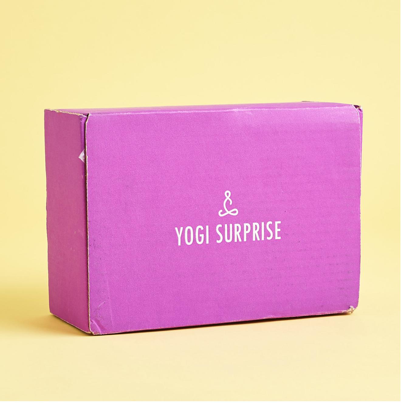 Yogi Surprise October 2020 Box Spoilers + Coupon!