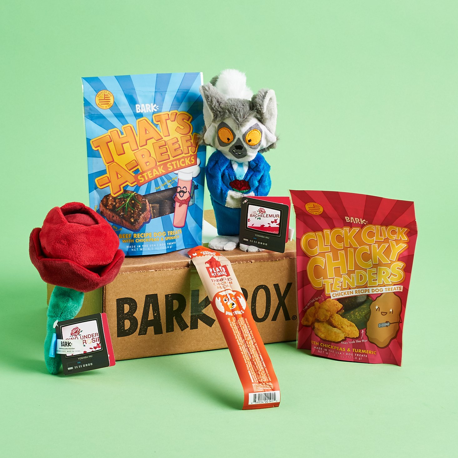 BarkBox Subscription Box Review + Coupon – September 2019
