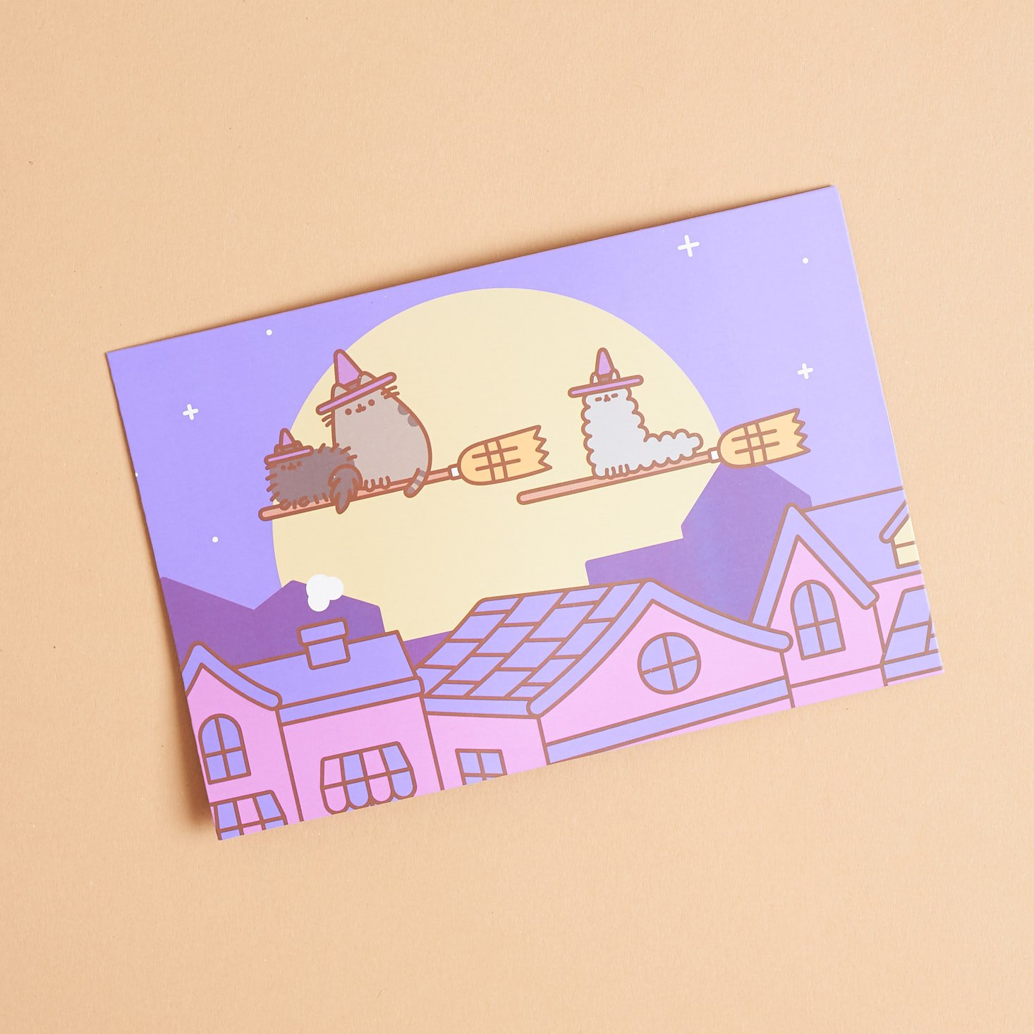 front of pusheen info card