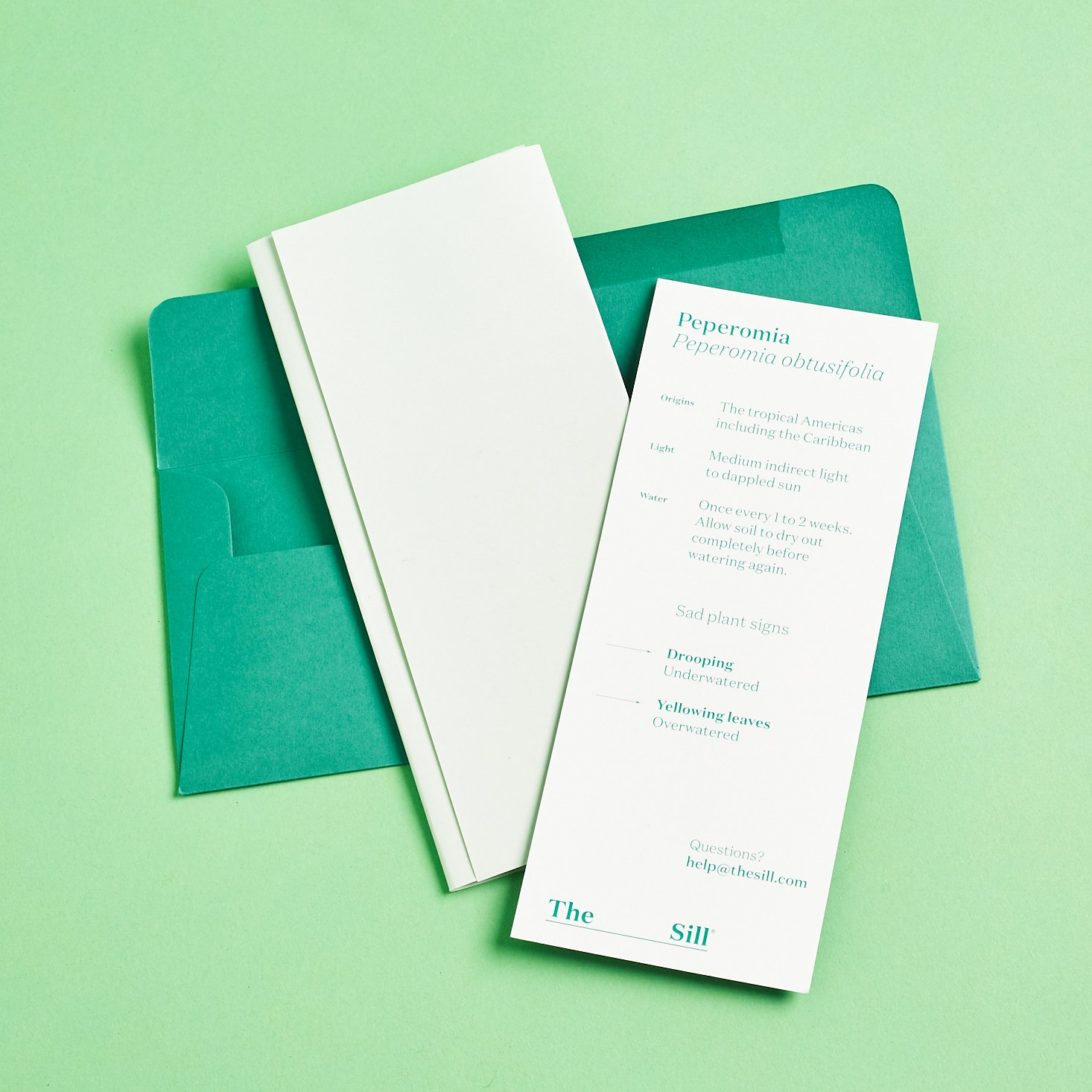 plantinfo cards in teal envelope