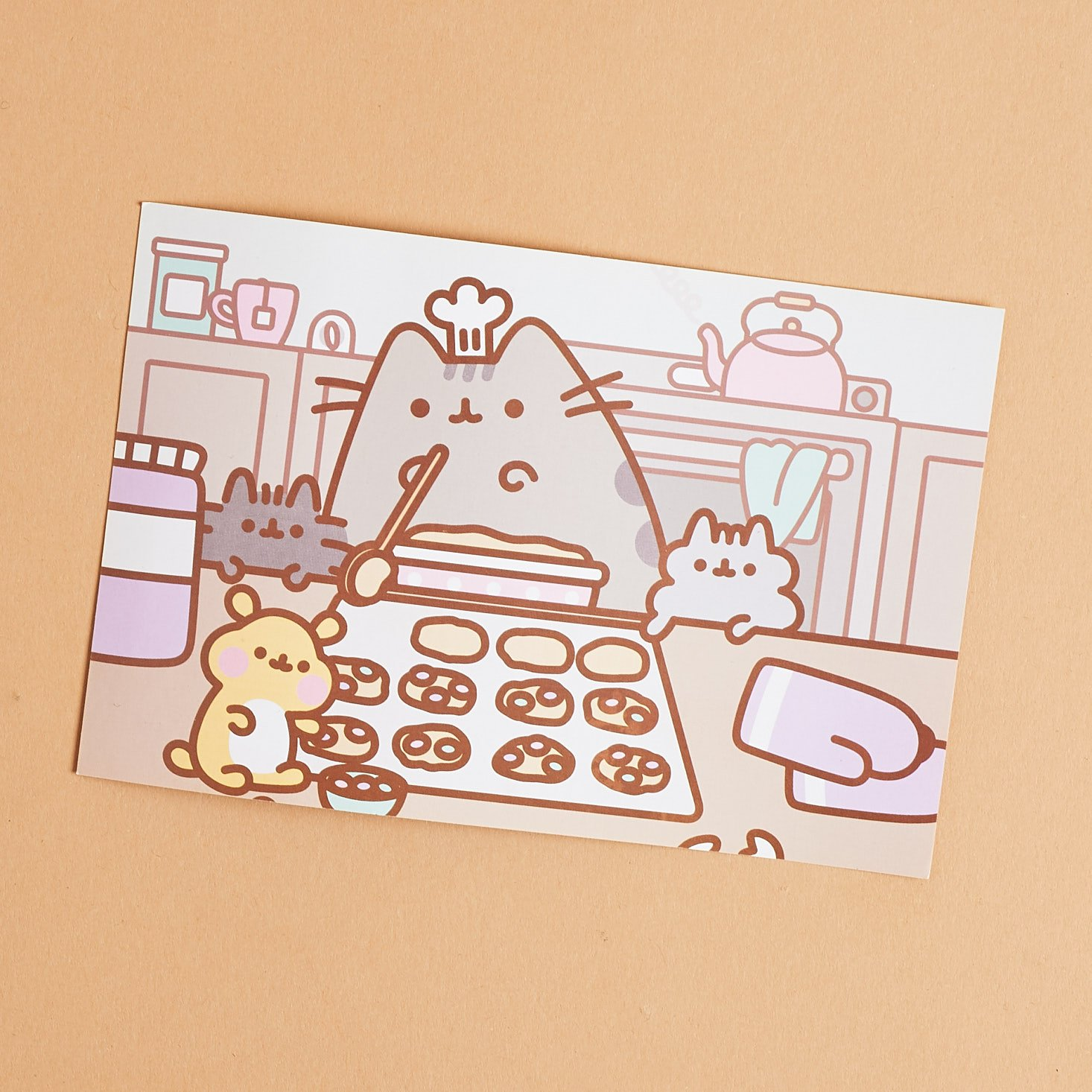 Baker Pusheen illustration on front of info card