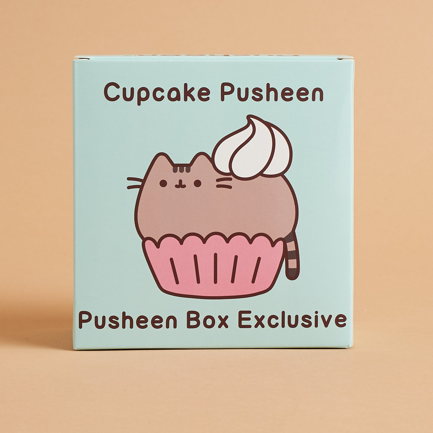 back of Cupcake Pusheen Vinyl Figure box