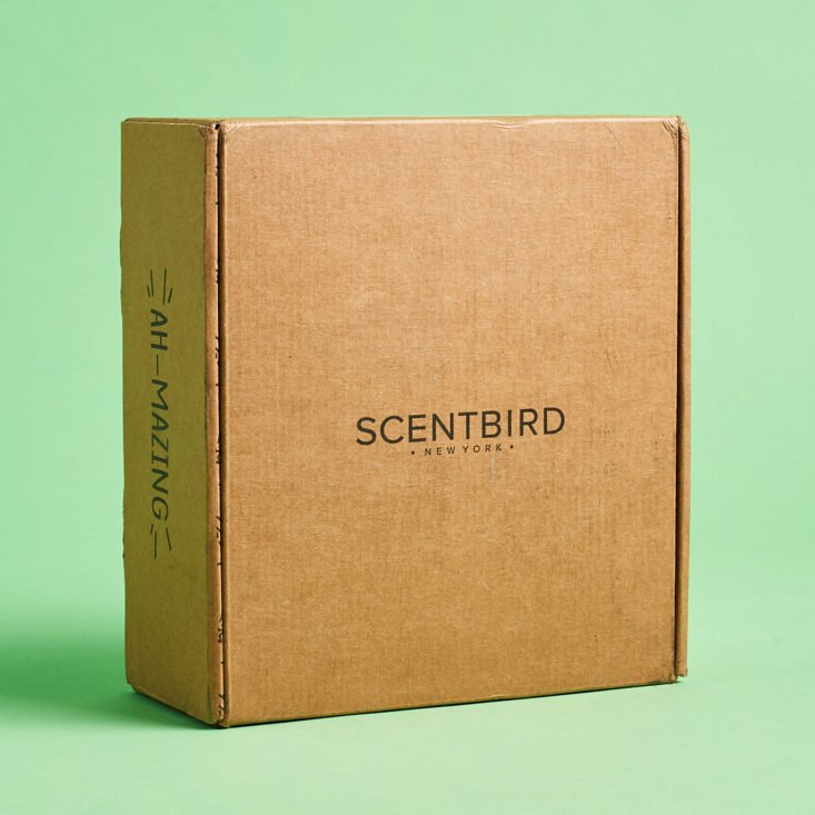 Scentbird January 2020 skincare subscription review