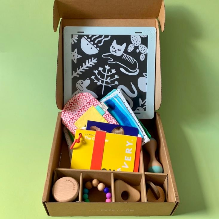 Baby Montessori toys from Lovevery subscription.