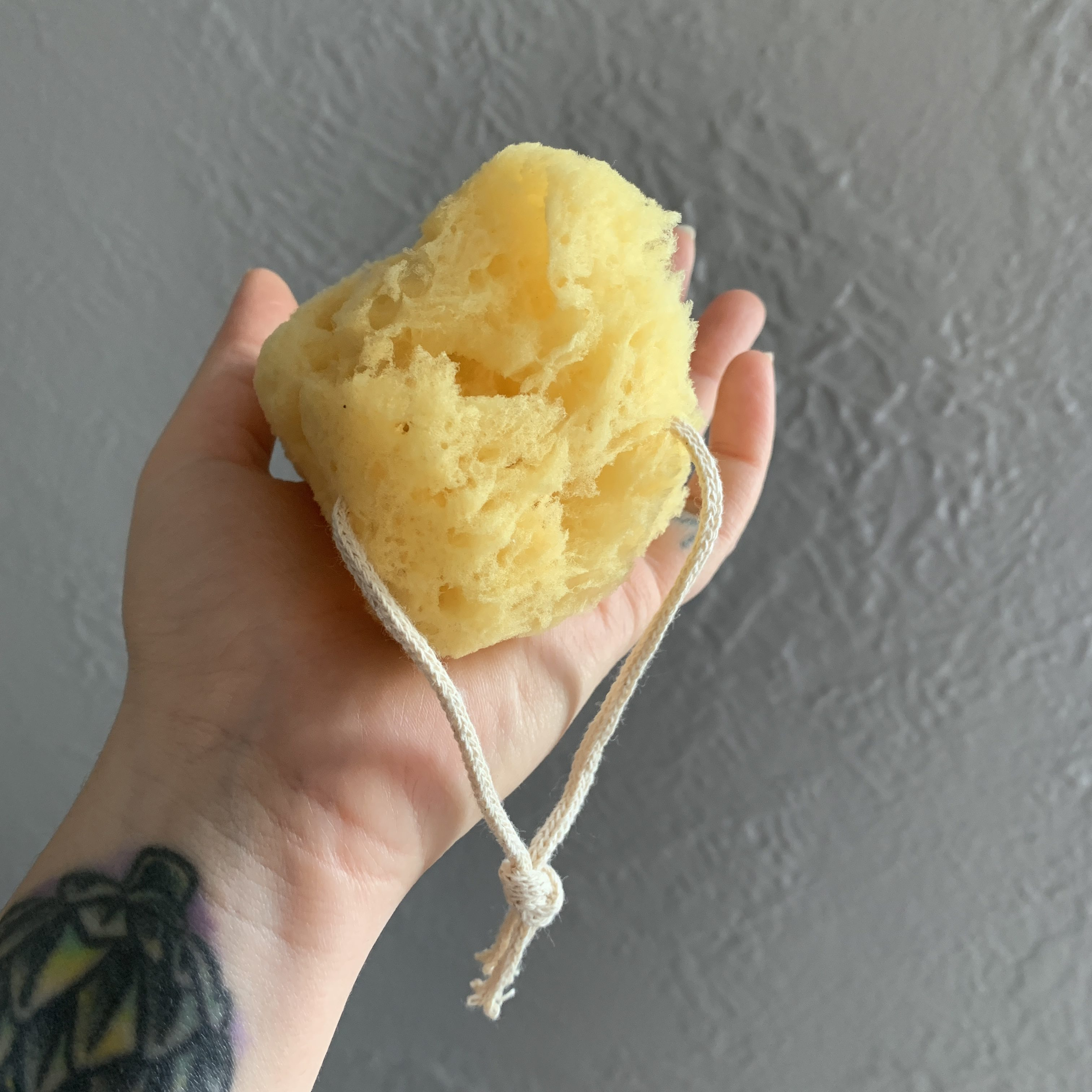 Public Goods Sea Sponge in hand