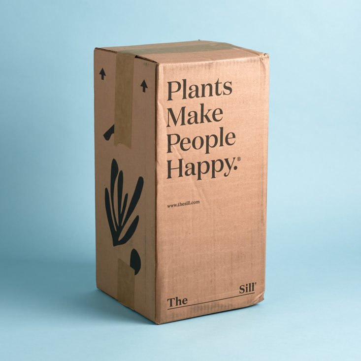 The Sill March 2020 plant subscription box review