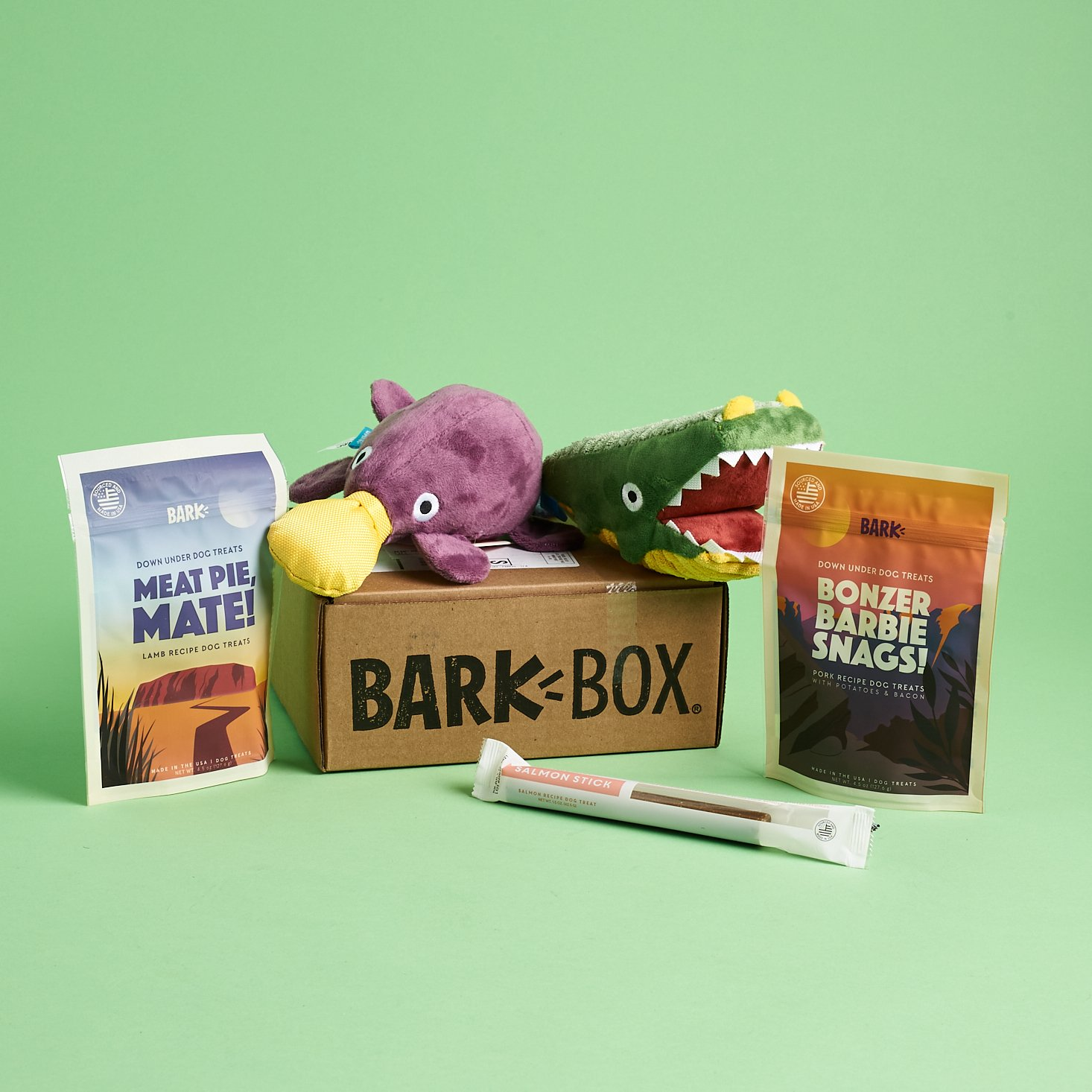 BarkBox Subscription Box Review + Coupon – March 2020