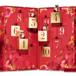 AERIN 2020 Advent Calendar – Available Now!