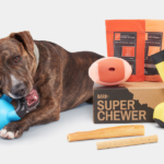 Super Chewer Coupon – 50% Off Your First Box!