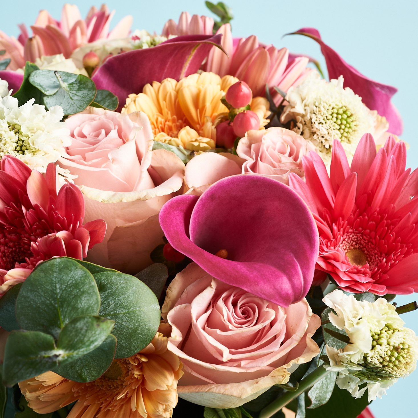 BloomsyBox Says Best Friends Day Isn't Over Yet With $5 Off Bouquets