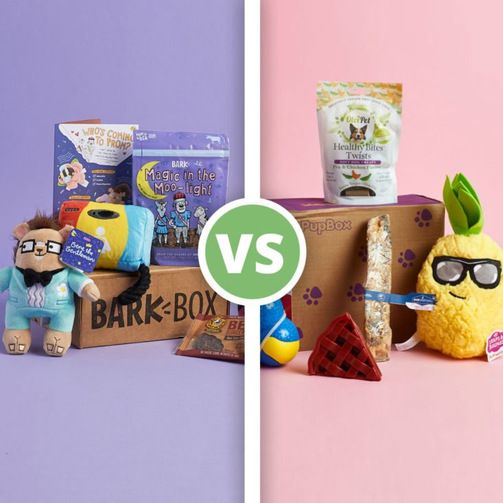 BarkBox vs. PupBox — Which is Better for Your Pup?