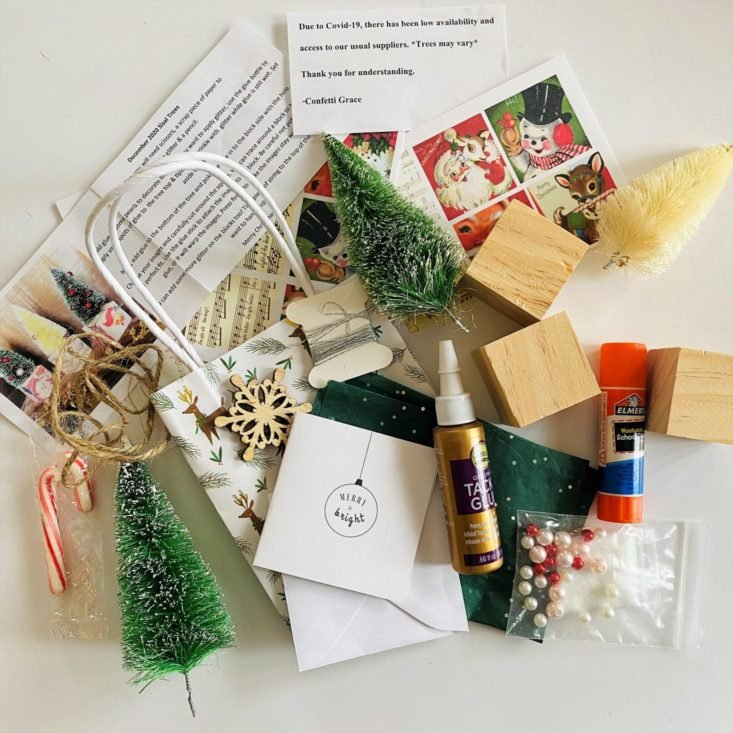Review for Lil' Grace DIY Subscription Box Review - December 2020