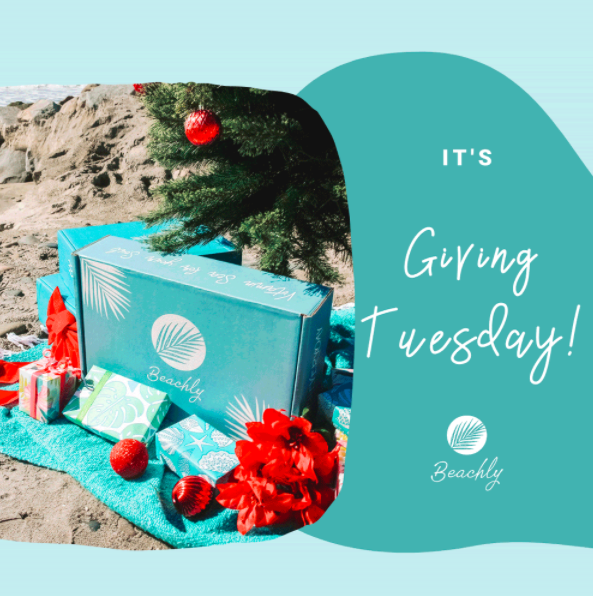 Beachly Giving Tuesday Offer – $30 OFF Winter Box + Tree Planting!