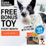 Super Chewer Coupon – Free Toy With Each Box + Spa Box Available Now!