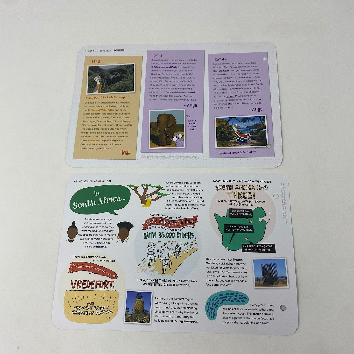 Facts and Diary Cards Back
